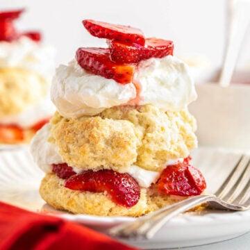 Close up of Strawberry Shortcake