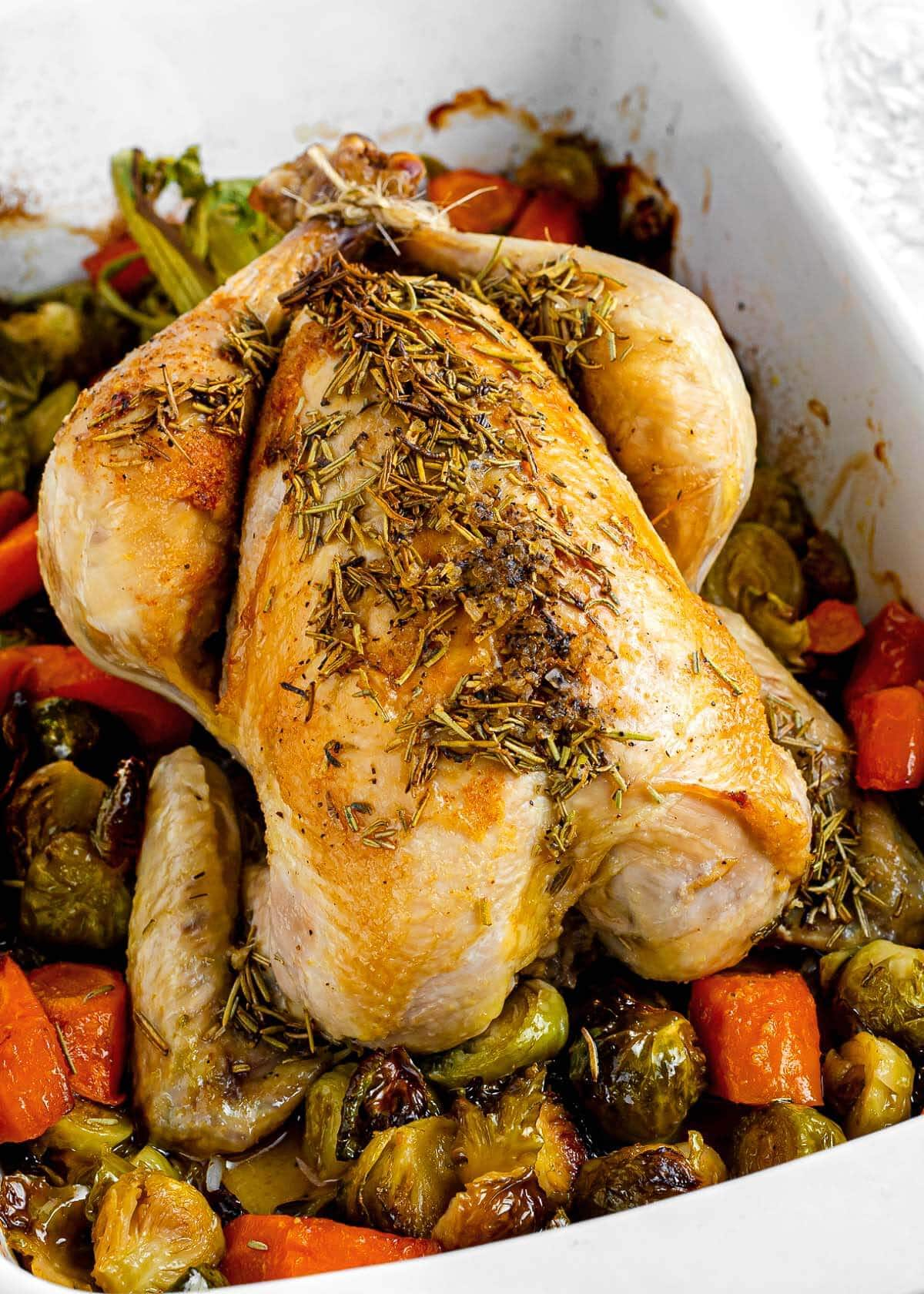 roast chicken in white pan with vegetables